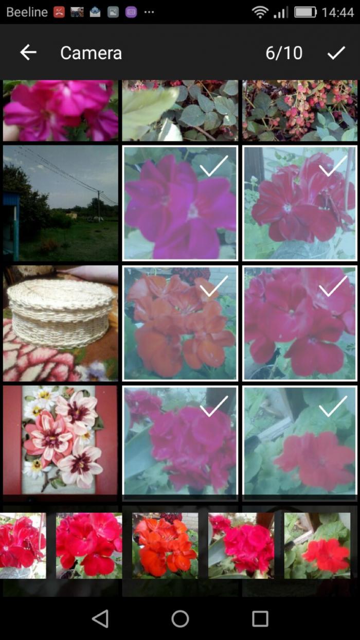Как несколько фото отправить одним файлом. Как в Viber отправить очень много фотографий