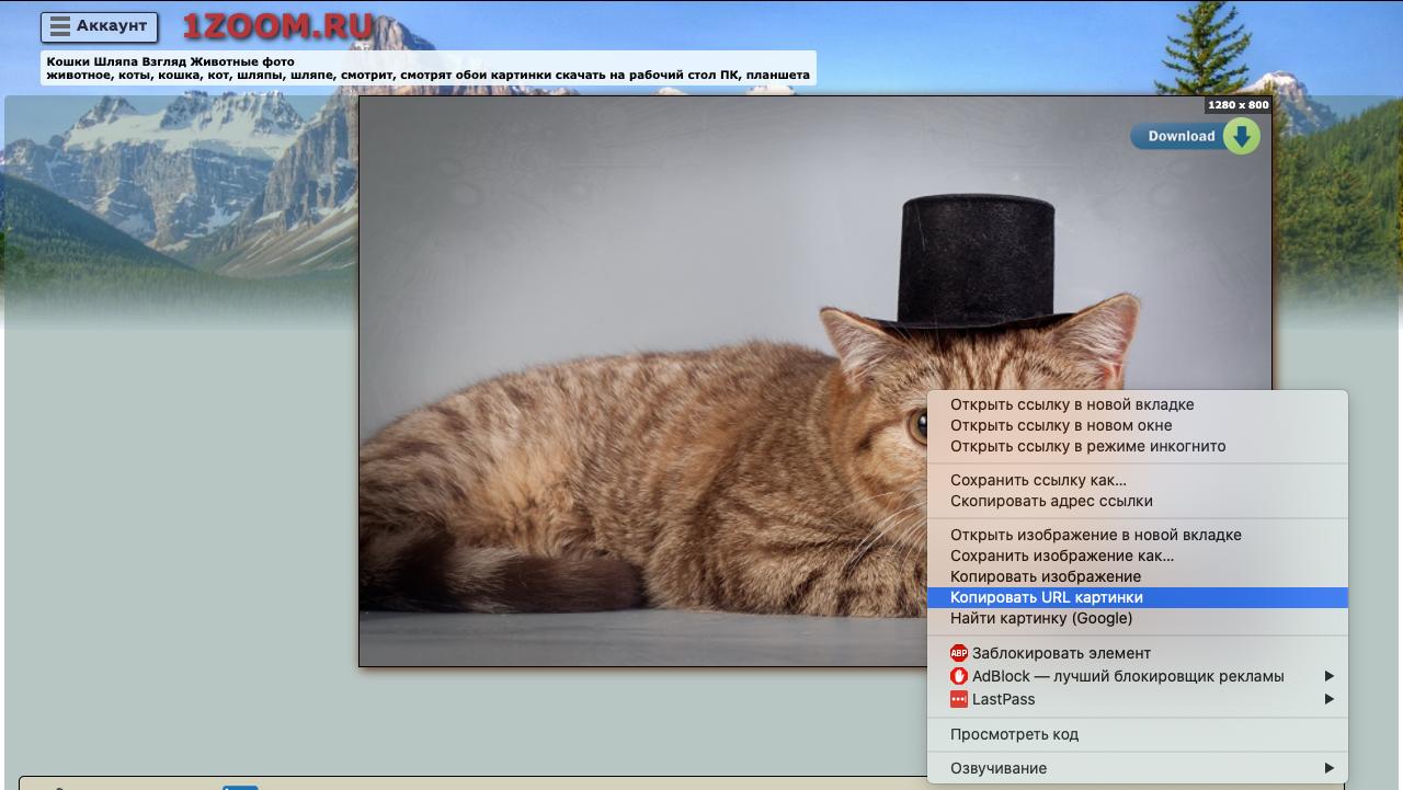 Как найти картинку по картинке с помощью Яндекса - 2