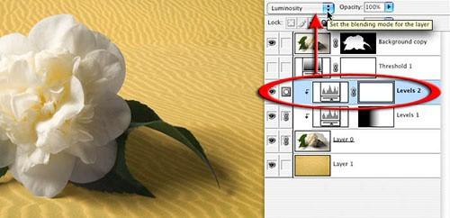 Шаг 11: Переименуйте фоновый слой и поместите его поверх импортированного фона - 2