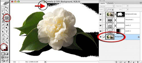 Шаг 7: Переместите ползунки полей «Гамма» и «Подсветка», чтобы сделать серые тона бумаги на фоне белыми