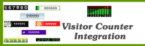 3. Awesome Visitor Counter