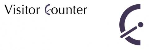 5. Visitor Counter Plugin